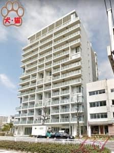 レジディア東桜Ⅱ 最上階メゾネットタイプ
