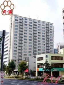 KDXレジデンス東桜Ⅰ (ケーディーエックスレジデンス東桜1)