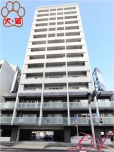 プロビデンス葵タワー