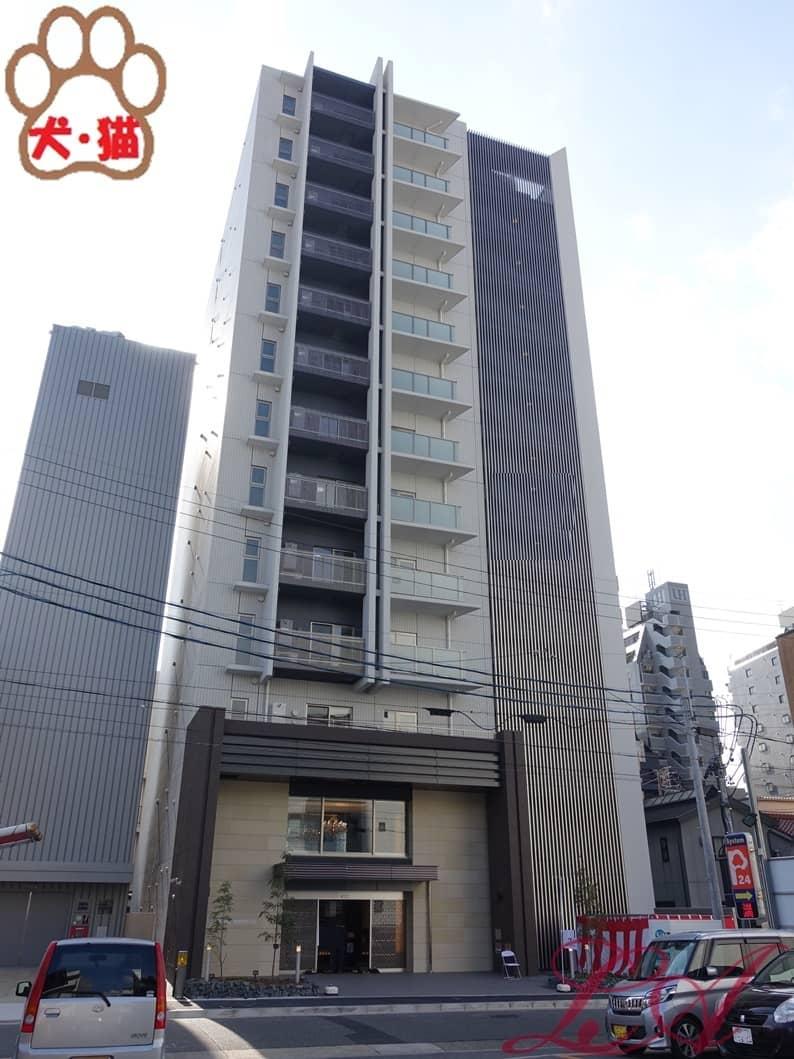 ロイジェント新栄2pet