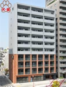 N apartment (エヌアパートメント)2~9階タイプ